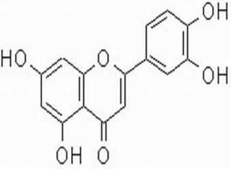 木犀草素; 3',4',5,7-四羟基黄酮