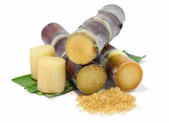 甘蔗千赢手机app下载官网,甘蔗粉